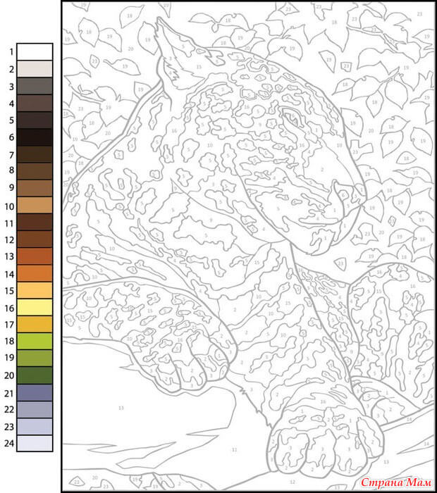 Раскраска по номерам леопард - скачать, распечатать