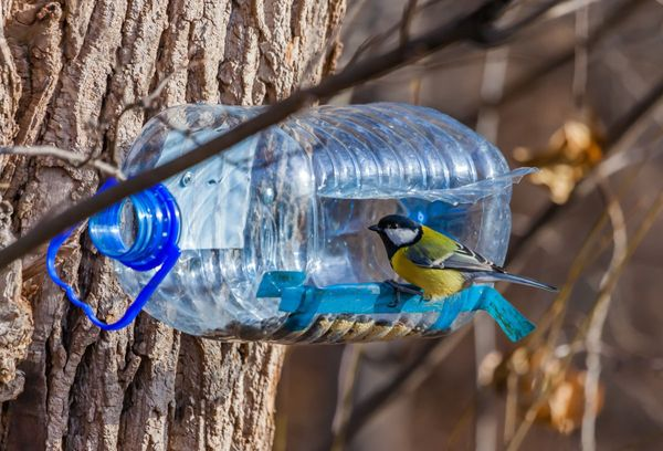Самодельная кормушка из бутылки
