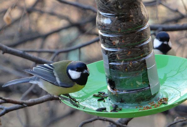 Пластмассовая кормушка для птиц