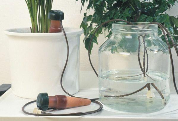 Капельный полив с помощью фитиля