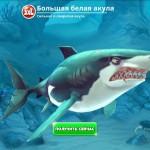 Hungry Shark World 3