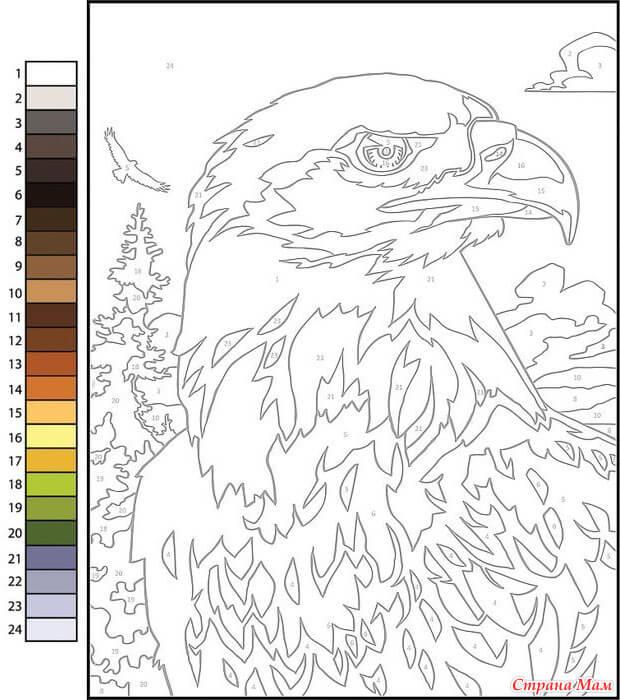 Раскраска по номерам орел - скачать, распечатать