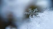 Картины по номерам - зима