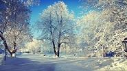 Картины по номерам - зимний пейзаж
