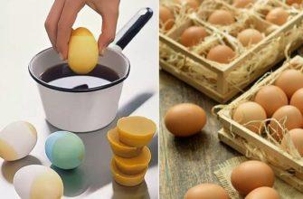 яйца в парафине