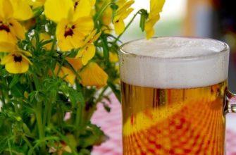 Пиво для цветов
