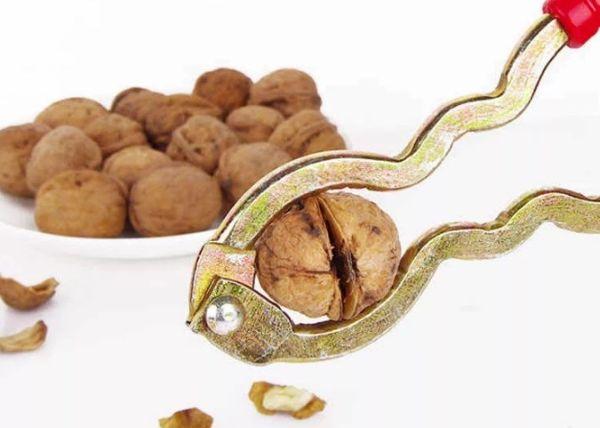 Мастер-класс: как правильно колоть грецкие орехи