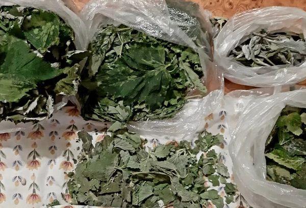 Чайные листья замороженные