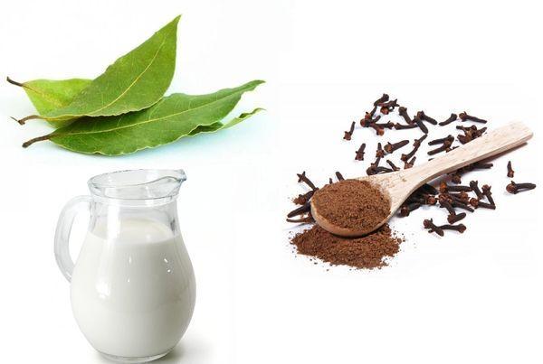 Лавровый лист, гвоздика и молоко