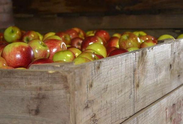 Деревянный ящик с яблоками